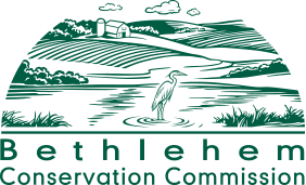 Bethlehem Conservation Commission
